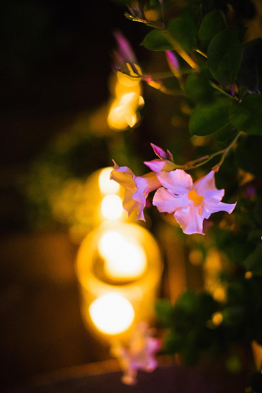 endorfina foksal wesele dekoracje