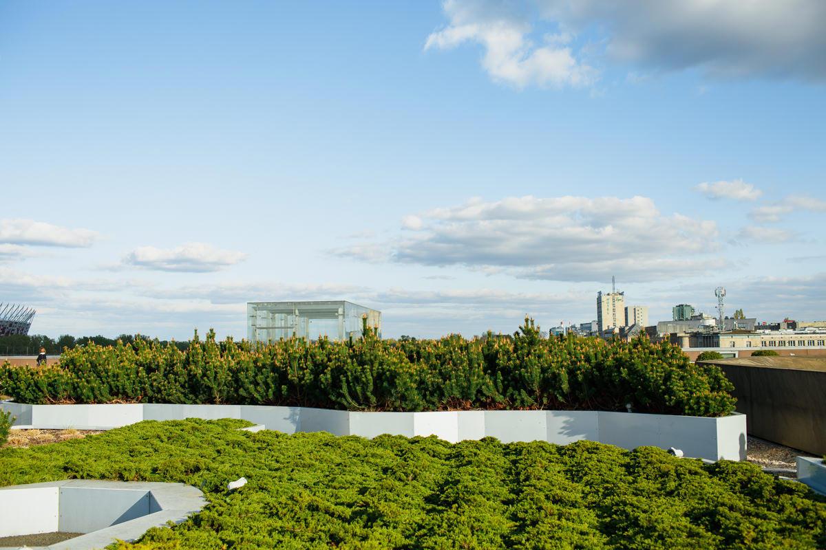 centrum nauki kopernik dach ogrod zdjecie